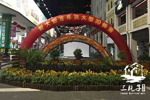 2016新大新百年庆 大型3D画2
